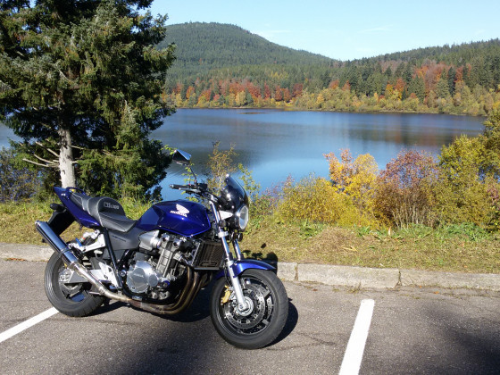 Schwarzenbachtalsperre im Herbst